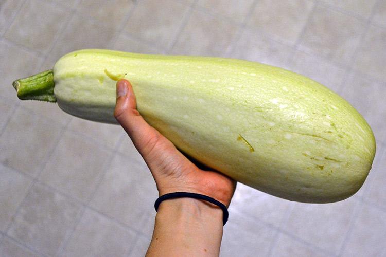 Большие овощи в жопы эро