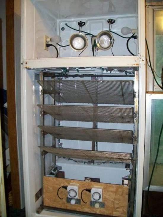 Инкубатор для яиц сделать из холодильника своими руками
