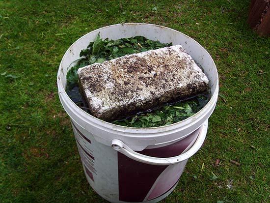 Приготовление зелёного удобрения из крапивы