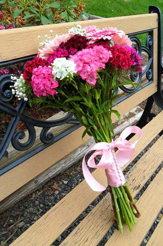 Турецкие гвоздики цветы 58