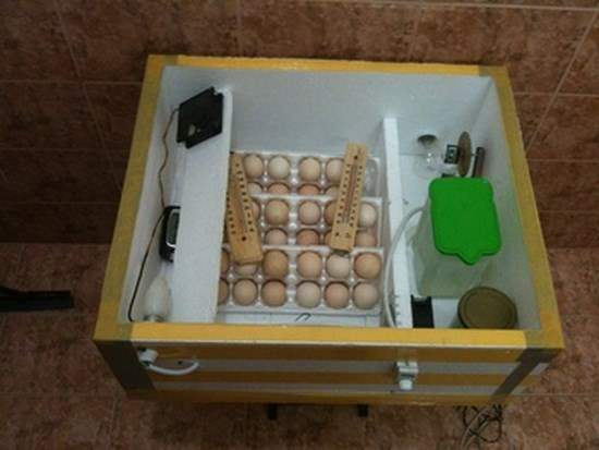 Инкубатор из холодильника своими руками 811