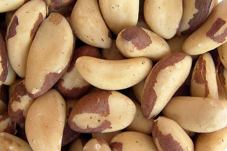 Бразильский орех польза и вред для здоровья организма человека