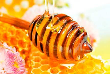 Мёд - лечебные свойства