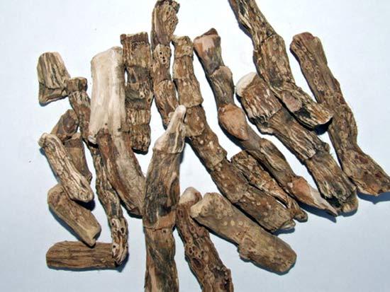 Сушеные корневища аира