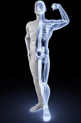 https://good-tips.pro/images/health/vitamins/stronger-bones.jpg