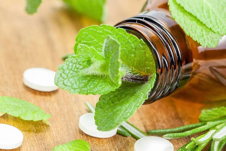 Полезные травы для здоровья человека