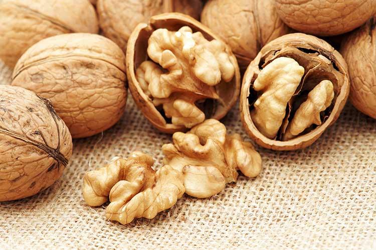 Полезные и лечебные свойства грецкого ореха
