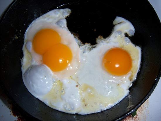 Яичница из яиц мускусной утки